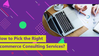 How to Pick the Right eCommerce Consulting Services?