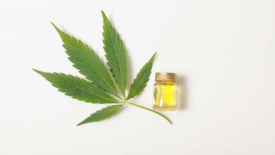 Is CBD a Good Option for Employee Health and Wellness?